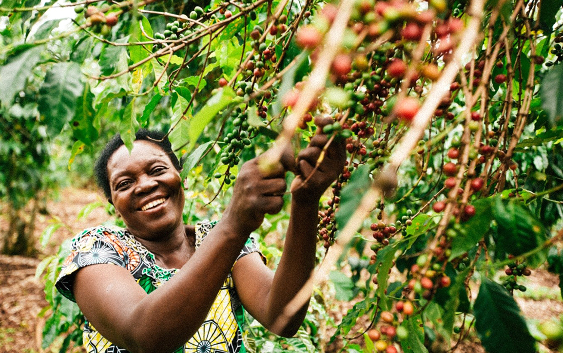 Woman coffee farmer in Rwanda