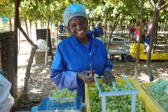 Creating jobs in Namibia's agriculture sector