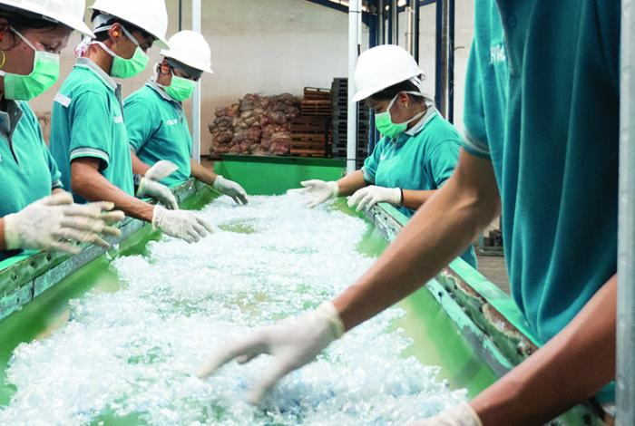 photo, workers separating plastics