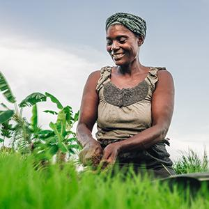 photo, African woman in field