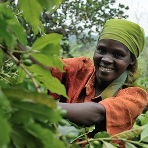 photo, woman smiling and checking on crops